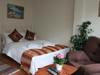 Comfortable Studio in Nisantasi #3 - Istanbul vacation rentals