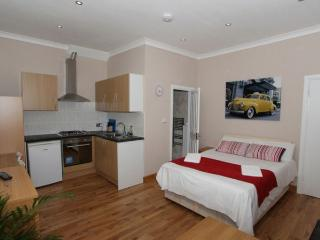 FR5 Large Studio in Swiss Cottage - Zone 2 - London vacation rentals
