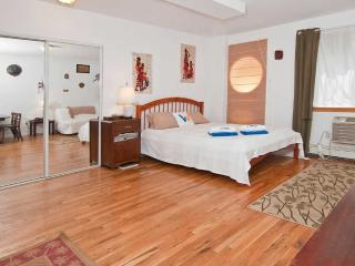 Lovely Spacious East Village Studio - New York City vacation rentals