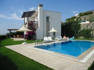 Villa Vero - Kadikalesi vacation rentals