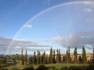 Golf and Ocean View Retreat in Kapalua/Discount Go - Kapalua vacation rentals