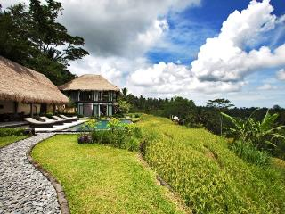 Lovely 4 bedroom Villa in Tegalalang - Tegalalang vacation rentals