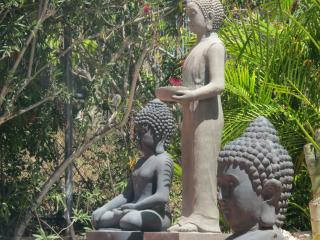 Buddha Garden Apartment with Pool  (no Bolivares) - Willemstad vacation rentals