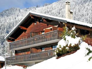 Les Pins B3 ~ RA9003 - Vaud vacation rentals