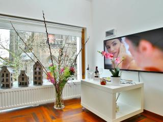 Luxury Apartments Delft - Delft vacation rentals