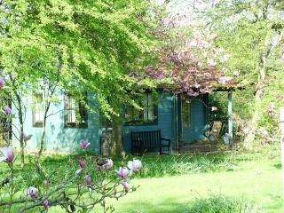 Beautiful Cottage with Internet Access and Satellite Or Cable TV - Stelling Minnis vacation rentals