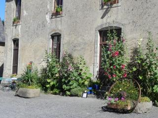 la ferme de pouligny - Saint-Vigor-le-Grand vacation rentals