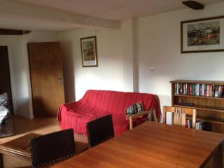 Beautiful Condo with Internet Access and Garden - Octon vacation rentals