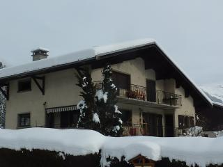 3 Double Bedroom Apartment in Verchaix - Verchaix vacation rentals