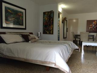 Caribbean Luxury Apartments 1a - Manati vacation rentals