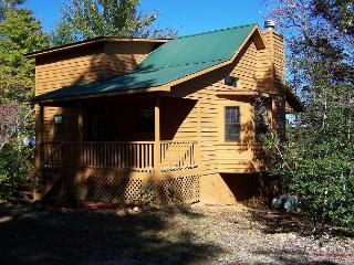 Cherokee Rose is a Cozy secluded Cabin for a perfect romantic getaway - Blairsville vacation rentals
