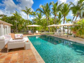 Darsena 20 - 8 BDR - Casa de Campo Marina - Altos Dechavon vacation rentals