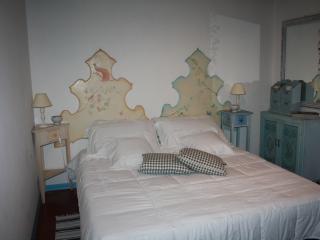Le Ortensie Apartment - Pietrasanta vacation rentals