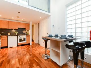 MODERN FLAT IN KING's CROSS!! - London vacation rentals