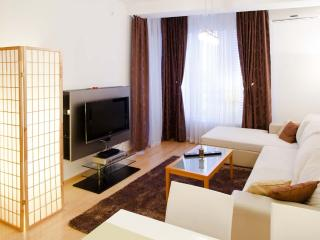 Beautiful New CENTRAL Apartment + PARKING €10/day - Belgrade vacation rentals
