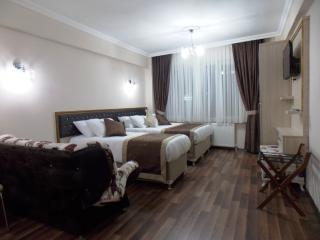 BeyazitHan Suites 2 - Istanbul vacation rentals