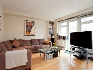 Primrose Hill Belsize park apartment with terrace - London vacation rentals