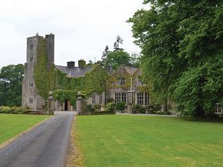 Belle Isle Castle (17 Guests) - County Cavan vacation rentals