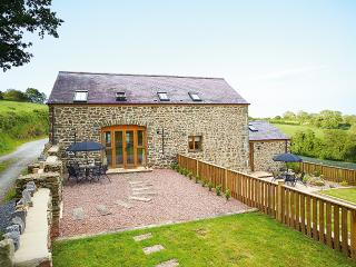 Mulberry Cottage - Carmarthenshire vacation rentals