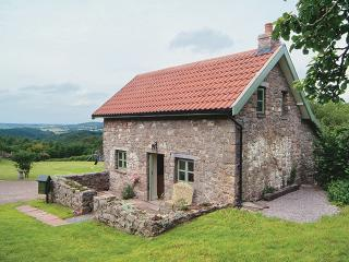 Orchard Cottage - Monmouthshire vacation rentals