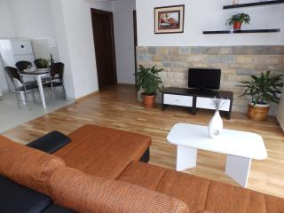apartment nagoja - Zadar vacation rentals