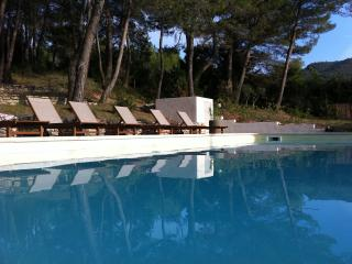 4 bedroom House with Internet Access in Menerbes - Menerbes vacation rentals