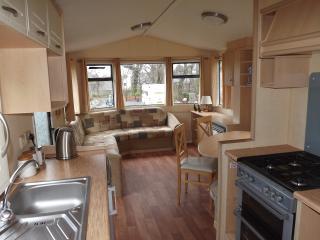 Trefor Riverside Caravan - Trefor vacation rentals