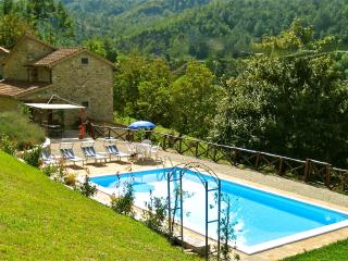 Lovely Villa with Internet Access and Cleaning Service - Pieve Santo Stefano vacation rentals