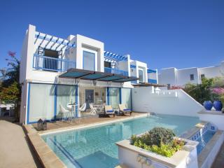 PRNV1 Villa Tinos - Fig Tree Bay - Protaras vacation rentals