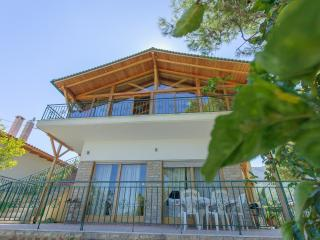 Vacation Rental in Central Greece