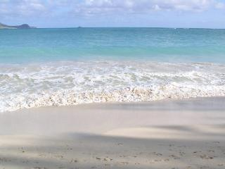 Kailua Ohana, 2BR, A/C, Steps to Beach - Kailua vacation rentals