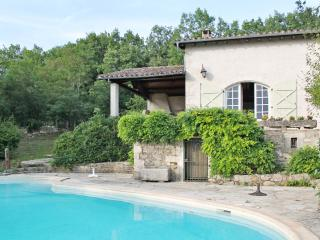 Country house in the Midi-Pyrenées, with large garden, 3 terraces and swimming pool - Molieres vacation rentals