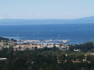 Monterey Bay at your Fingertip - Carmel vacation rentals