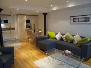 Maritime Bond leith (parking),3 bedroms - Edinburgh vacation rentals