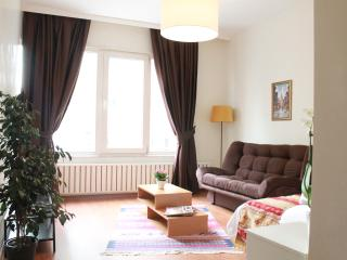Comfortable Studio in Nisantasi #1 - Istanbul vacation rentals
