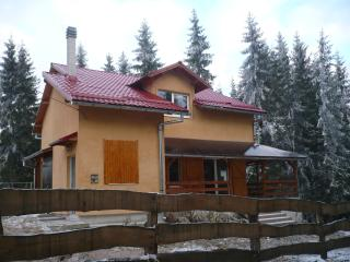 Spacious villa in Marisel, Transylvania, with terrace and garden surrounded by lush forest - Marisel vacation rentals