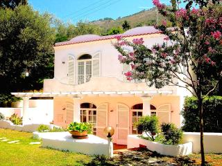 Beautiful Villa with Internet Access and A/C - Anacapri vacation rentals