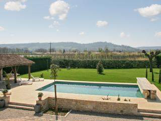 Rustic house in Lot-et-Garonne, in the heart of French wine country, with terrace and private pool - Saint Sylvestre sur Lot vacation rentals