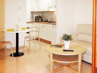 Modern apartment in Salamanca City, next to Plaza Mayor! - Salamanca vacation rentals