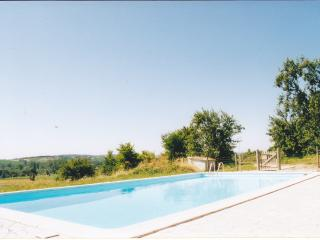 Contemporary Aquitaine villa with gorgeous pool - Dordogne Region vacation rentals