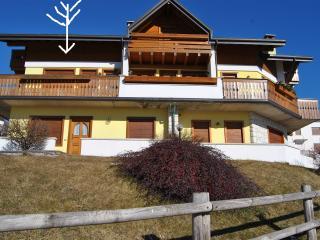 Altopiano di Asiago- APP. elegante con vista, 4 pe - Gallio vacation rentals
