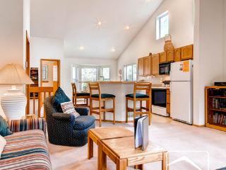 LT - Village Point 216 (VP216) - Breckenridge vacation rentals