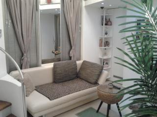 DOWNTOWN DUPLEX - Belgrade vacation rentals