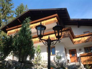 Appartamento sulle montagne del Tirolo Austriaco - Weidach vacation rentals