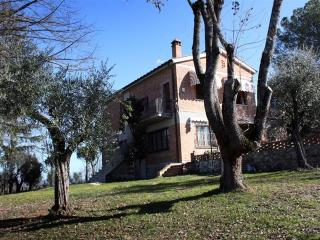 Villa Belvedere a Refined Apartment in Siena - Torrita di Siena vacation rentals
