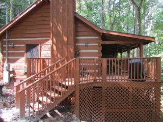 Bear View - Townsend vacation rentals