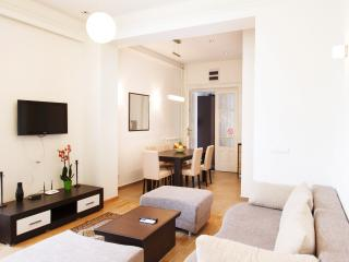 2 Bedroom Apartment   CENTRAL SQUARE   6 people! - Serbia vacation rentals