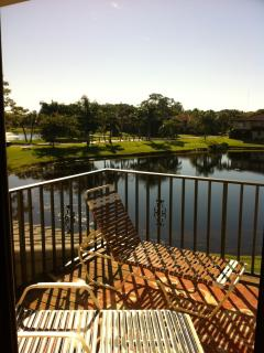 Beautiful Condo directly faced to the Pond - Bonita Springs vacation rentals
