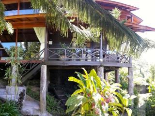 Mountain Lakeside Villa. Amazing views. Daily maid - Candi Kuning vacation rentals