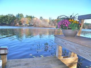 Lakeside Wooded Retreat on Kingston Lake - Hampton vacation rentals